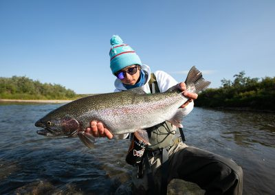 Big Alaska Rainbow Trout